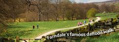 Enjoy a classic spring walk in the so-called 'Daffodil Dale' to see Farndale's glorious wild daffodils. It's a straightforward 3½-mile linear route alongside the enchanting River Dove, from Low Mill to Church Houses and back, though there is an alternative return route that climbs through farm fields for some lovely valley views. Depending on the weather, the daffodils are usually out between mid-March and mid-April, but this is a charming walk at any time of year.