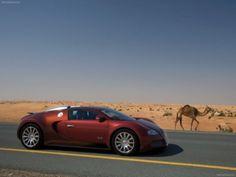 Bugatti Veyron 2009 poster, #poster, #mousepad, #Bugatti #printcarposter