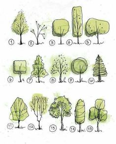 39 Ideas For Simple Tree Drawing Sketches Illustrations Tree Sketches, Drawing Sketches, Art Drawings, Drawing Ideas, Sketch Ideas, Drawing Drawing, Garden Drawing, Plant Drawing, Garden Art