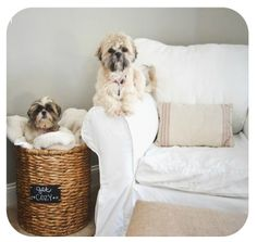 Keep cozy nap time essentials in a deep basket by the sofa. Handy, yet tidy! #familyroom #home #ideas