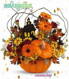Pumpkin, Irene, Pumpkins, Squash