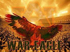 We love auburn football Auburn Alabama Football, Sec Football, Fall Football, College Football Games, Auburn Tigers, Auburn Vs, Rustic Art, Auburn University, Down South