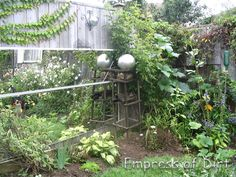 Mirrors In The Garden - add visual depth and interest; might also reflect light to plants along a fence?
