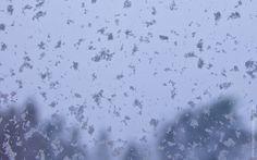 Skrivebordsbakgrunn: Snø, snø, snø / Snow, snow, snow I Wallpaper, Snow, Free, Outdoor, Outdoors, Outdoor Games, The Great Outdoors, Eyes, Let It Snow