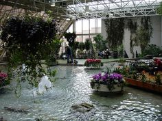 Devonian Gardens Alberta