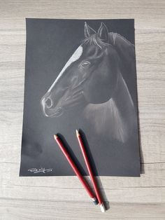 """""""Shadow"""" Portrait black horse with pastel pencils on paper by Rud'art … Crayons Pastel, Pastel Pencils, Crayon Template, Shadow Portraits, Crayon Crafts, Creations, Horses, Paper, Art"""