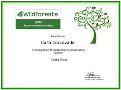 Congratulations, The Ancient Forests Foundation has selected Casa Corcovado Jungle Lodge as one of our 2013 finalists and acknowledged your business as a recommended ecolodge in this year's award program. All of our finalists were excellent choices for their respective eco-travel destinations. Corcovado National Park, Forests, Choices, Congratulations, Travel Destinations, Tourism, Foundation, Business, Road Trip Destinations
