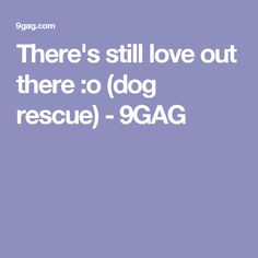 There's still love out there :o (dog rescue) - 9GAG