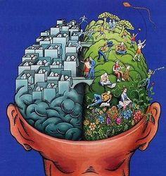 los dos hemisferios del cerebro . Más #humor en www.lasfotosmasgraciosas.com