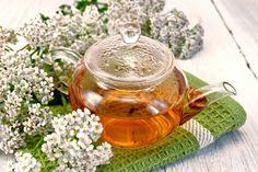 Ceaiuri care previn sau opresc dezvoltarea VARICELOR dureroase şi inestetice - Top Remedii Naturiste