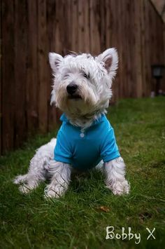 Bobby is so Handsome in his Polo..... from a FB account