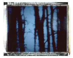 Returning Home - polaroid photography large print limited edition