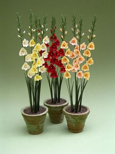 Hey, I found this really awesome Etsy listing at https://www.etsy.com/listing/164025012/gladioli-paper-flower-kit-for-112th