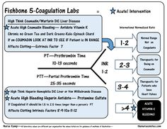 This is the Fifth of my series explaining the Coagulation Fishbone  Diagram with the Focus on Coumadin and Heparin with PT prothrombin Partial Thrombin Time  PTT and INR International Normalized RationElect rolytes Hyponatremia VS Hypernatremia Hyperkalemia and Hypokalemia will be next along with BUN and Creatinine and glucose, Study sheets for nurses! The Nurses Notes Nursing School