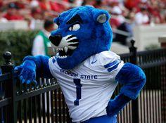 Georgia State Panthers. Hello, Pounce!