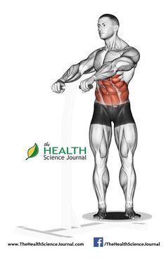© Sasham   Dreamstime.com – Ab workouts for men. The rotation of the trunk, standing on the simulator Twist