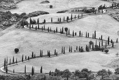 Tuscany, 1978 Gianni Berengo Gardin