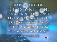"Jesus answered, ""It is writen: 'Humankind shall not live on bread alone, but on every word that comes from the mouth of God.'"" Matthew 4:4 (NIV) #bible #scripture #quote #christian #jesus #faith #niv #grace"