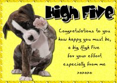 Congratulate someone on their achievement with this cute card. Free online High Five Congratulations ecards on Congratulations Penguin Awareness Day, Congratulations Quotes, Sending Hugs, Online Greeting Cards, Beautiful Gif, Big Hugs, High Five, Name Cards, Valentine Day Cards