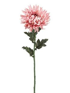 Chrysanthemum Silk Flower in Mauve Pink 7 Bloom Birth Flowers, Silk Flowers, Faux Flowers, Cute Tattoos, Body Art Tattoos, Tatoos, Mauve, Crysanthemum Tattoo, November Birth Flower