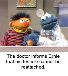 119 Best Bert And Ernie Fun Images Sesame Street Memes