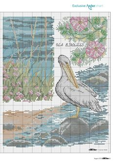 Wasservögel 4