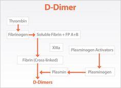 """D- DIMERS - """"Google"""" paieška"""