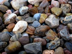 Here's how to identify 44 of the most common igneous, sedimentary, and metamorphic rock types with a handy rock identification chart. Oregon Beaches, Oregon Coast, Minerals And Gemstones, Rocks And Minerals, Crystals Minerals, Rock Identification, Rock Tumbling, Rock Hunting, Thing 1