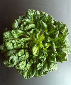 Tatsoi. There have been a lot of greens around here lately, but for your next meal, forego the arugula and fill up your salad bowls with this Asian leafy green instead.