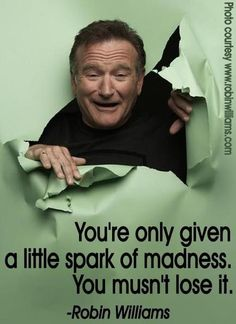 """""""You're only given a little spark of madness. You mustn't lost it."""" #RobinWilliams #quote"""
