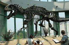 Acrocanthosaurus - Wikipedia, the free encyclopedia