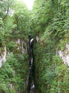 Nous roulions sur la N5, au départ des Rousses, direction Arbois puis Baume-Les-Messieurs dans le but de découvrir des cascades. Nous avons exploré quelques sites naturels indiqués par des panneaux et n'avons pas été déçu. Cette région regorge de sources,...