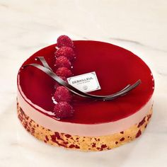 DebailleulL Gateaux No 1 (raspberry mousse, raspberry biscuit)
