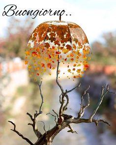 Good Day, Good Morning, Italian Greetings, Italian Memes, Umbrellas Parasols, Caramel Apples, Bird Feeders, Art Images, Dandelion