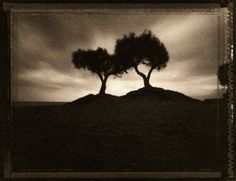 original in Kallitype 4x5 inches Pinhole camera Polaroid TYPE 55 (ISO 50) @ ISO 25