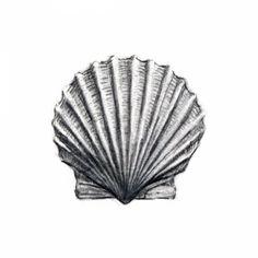 Scallop Shell Print, Myles Cavanaugh