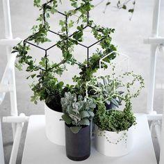 POV planter trellis large - black - Menu