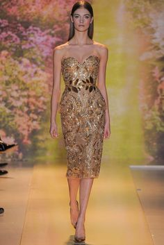 Zuhair Murad Spring 2014 Couture Collection- I chose this dress because it reminds me of a Callot Souers dress with the metallic elements.