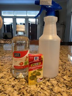 1000 Ideas About Pantry Moths On Pinterest Bed Bugs Survival And Moth Repellent