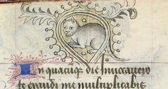 Hill Museum & Manuscript Library  Via World Digital Library Horae Beatae Virginis Mariae http://www.wdl.org/en/item/9913/view/1/329/