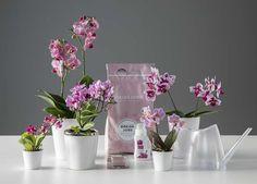 Det selges egen jord og gjødsel spesielt egnet for stell av orkidéer. Glass Vase, Yoga, Flowers, How To Make, Decor, Decoration, Decorating, Royal Icing Flowers, Flower