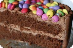 Double layered chocolate smartie cake