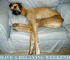 No room for a nap? HA!