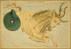 AstroSpirit / Capricorn ♑ / Earth / The Goat / Constellation