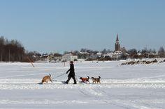 Gulf of Bothnia on the ice. Raahe, Northern Ostrobothnia province of Finland - Pohjois-Pohjanmaa