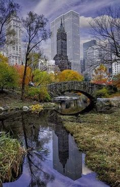 Had to Pin-It, such a beautiful scene - went straight to my heart. City reflections, Central Park, New York. I worked just across the street from Central Park, so this place was an intrical part of my experience of NYC.and I loved it! Empire State Building, Central Park New York, Places To Travel, Places To See, Ville New York, Voyage New York, Jolie Photo, Concrete Jungle, Park City
