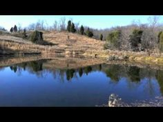 Heath Detweiler has 9 beautiful country acres for sale in Stockport, Ohio offering a large pond and gorgeous homesite. Owner financing is available with a lo. Acres For Sale, Dream Properties, Land For Sale, Property For Sale, Pond, Ohio, River, Country, Outdoor