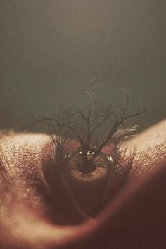 Nevam Doyle é reconhecido por suas habilidades de manipulação digital. Neste post reunimos o trabalho onde fotos de olhos inspiraram o artista.