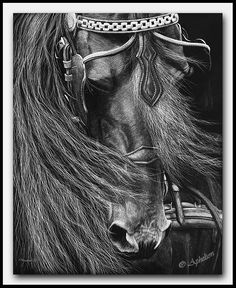 "scratchboard art | scratchboard Art by Cathy Sheeter - ""A Driving Force"""