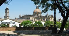Cathetral in Jerez